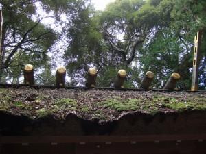 2011伊勢神宮10