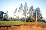 エーターヤー ゴルフクラブ 、タウンヂー