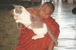 ガペチャウン僧院 Ngaphekyaung Monastery