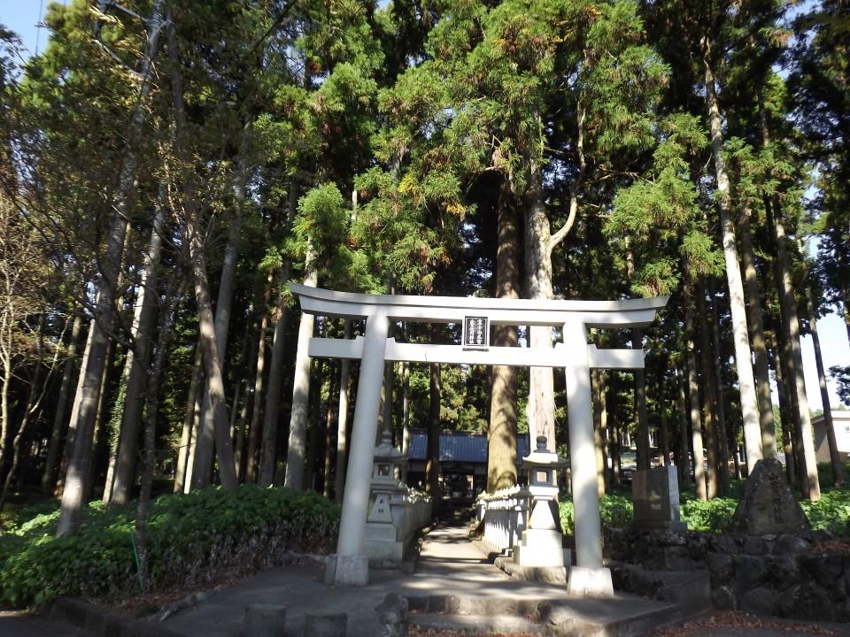 山宮神社-2