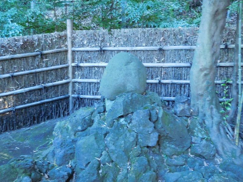 竹採公園-6
