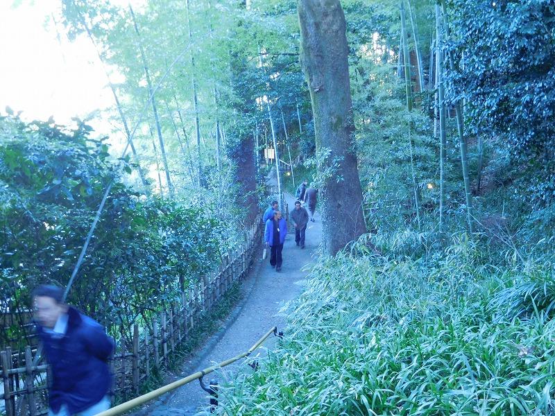 竹採公園-4